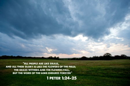 Collection of hundreds of Free Bible Verse from all over the world.