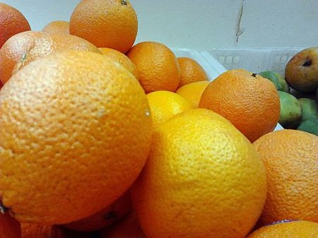 """This Indian hybrid orange may be closer to the fruit spoken of as """"apples of gold"""" in Proverbs 25:11."""