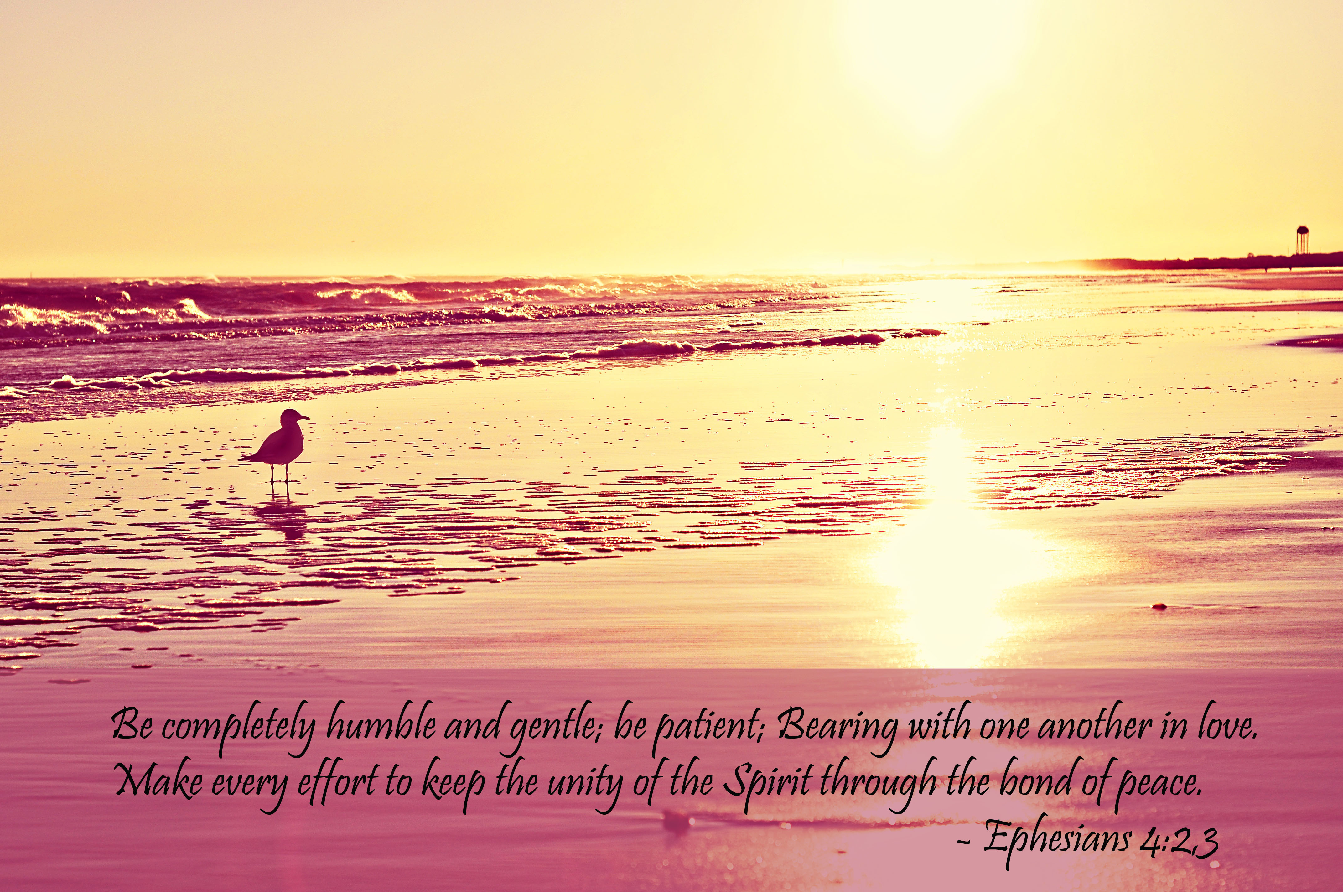 Picture Quote On Ephesianns 210 Niv: Ephesians 4:2–Living With Patience