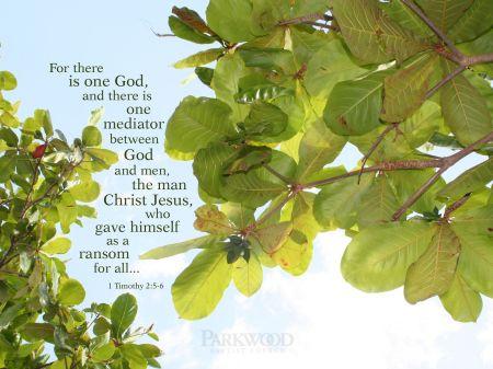 1 Timothy-2 5-6
