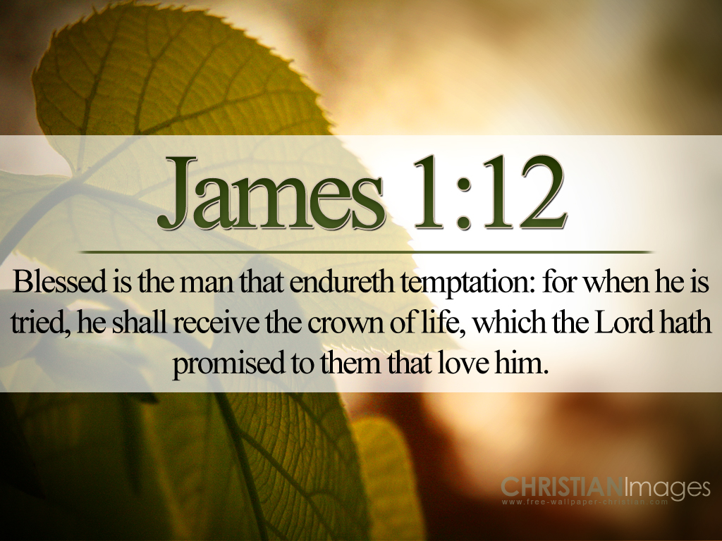 verse about how to live as a kingdom