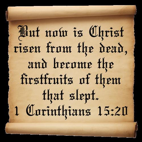 1 Corinthians 15:20-23 | Dr. J's Apothecary Shoppe