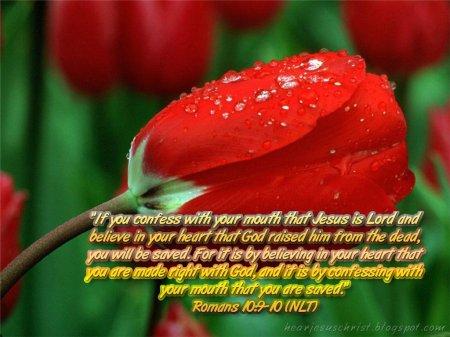 Romans 10-9 10