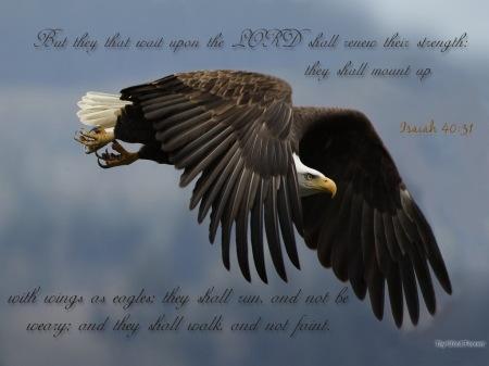 Isaiah 40_31