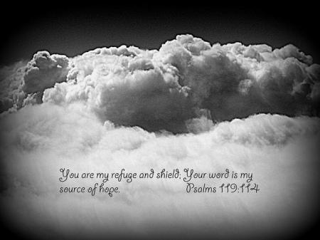 Psalm 119--114