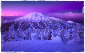 purple-mountain-majesty