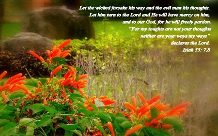 Isaiah 55--7-8