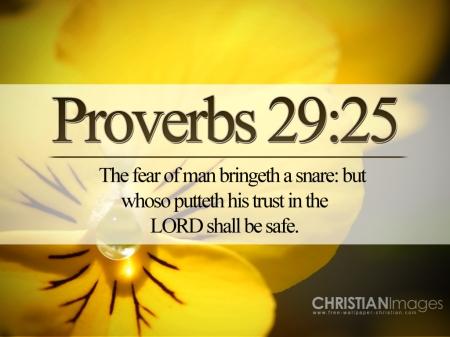 Proverbs-29--25