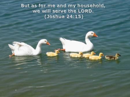 Joshua 24_15