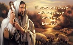 John 10--14
