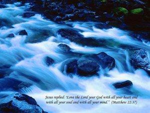 Matthew 22--37