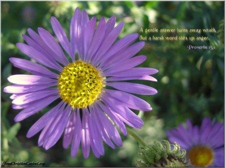 Proverbs 15--1