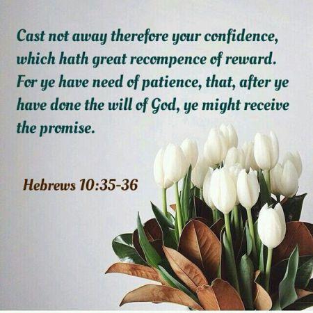 hebrews-10-35-36