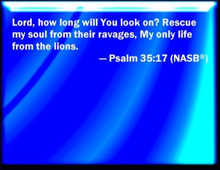 psalm-35-17