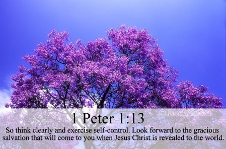 1-peter-1-13