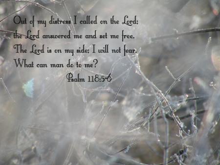 psalm-118-5-6
