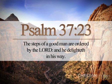 psalm-37-23-2