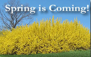 spring-is-coming