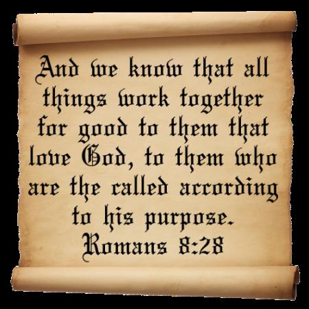 Romans 8--28
