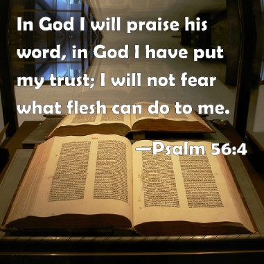 Image result for image in God I TRUST, WHAT CAN MAN DO TO ME